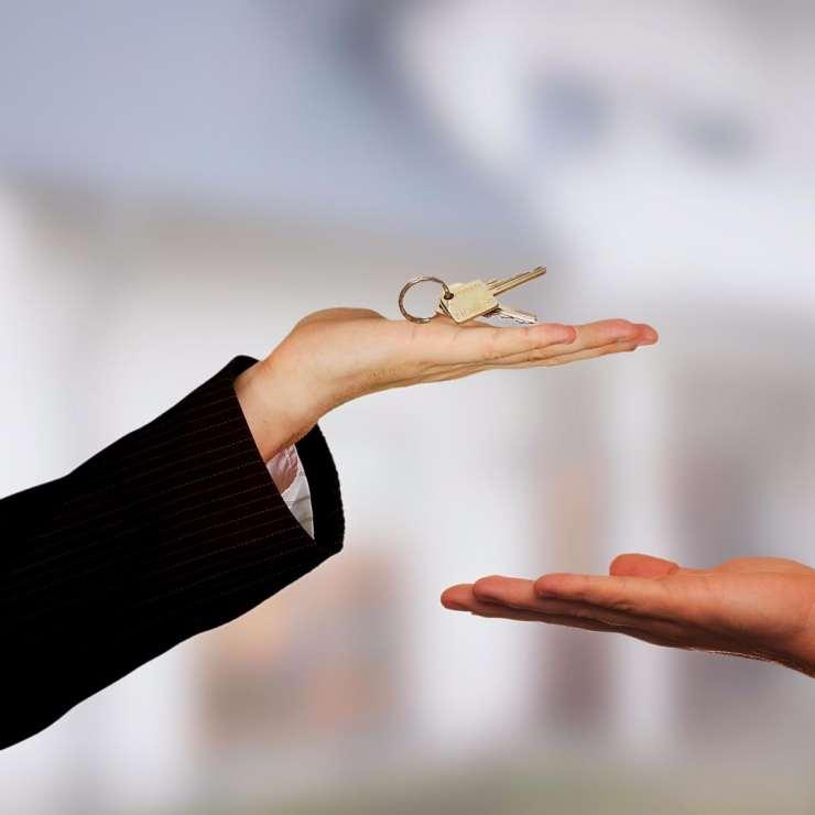 nachhause-immobilien-makler-gesucht-real-estate-3337032_1920 Nach Hause Immobilien - News