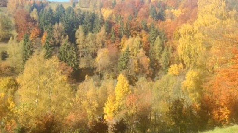 Bei klarer Sicht schaut man bis zum Rhöngebirge