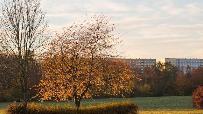Der Erholungspark Lößnig-Dölitz